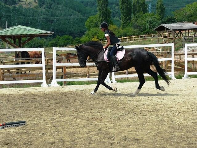 Колоездене и конни бази