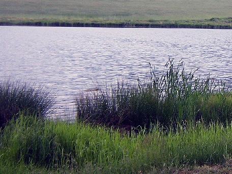 Suhodol Dam